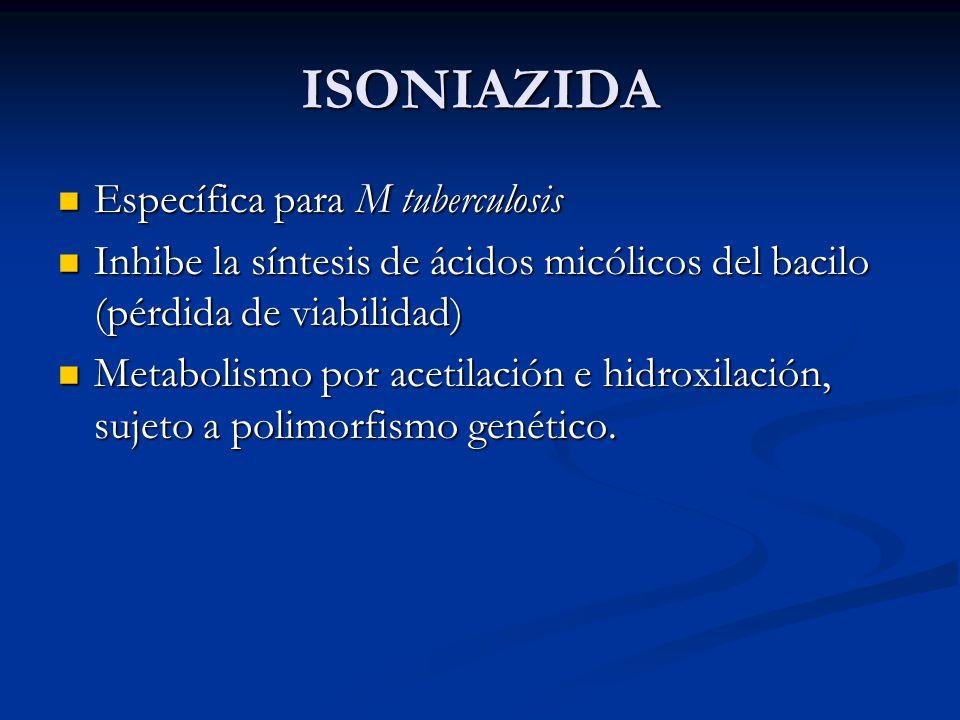 ISONIAZIDA Específica para M tuberculosis
