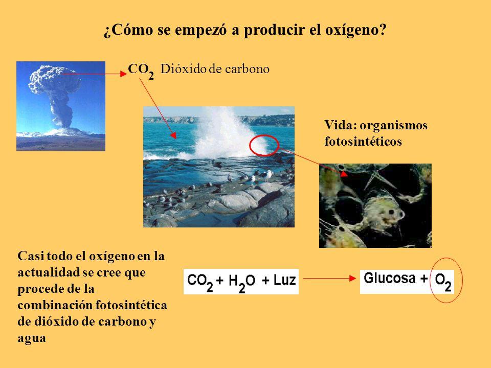 ¿Cómo se empezó a producir el oxígeno