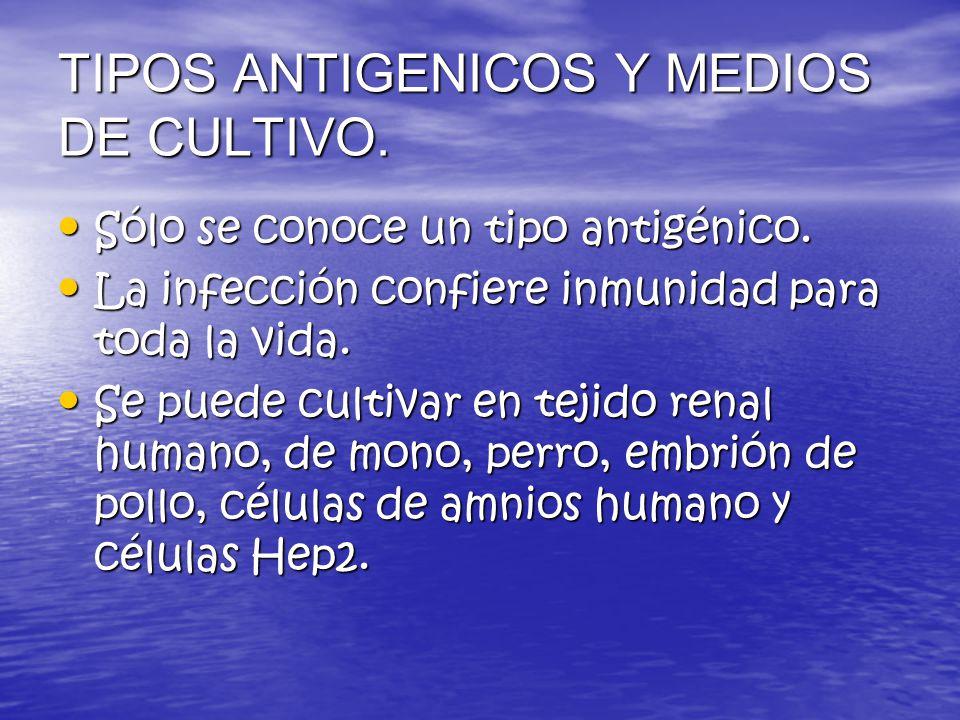 TIPOS ANTIGENICOS Y MEDIOS DE CULTIVO.
