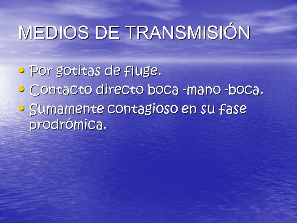 MEDIOS DE TRANSMISIÓN Por gotitas de fluge.
