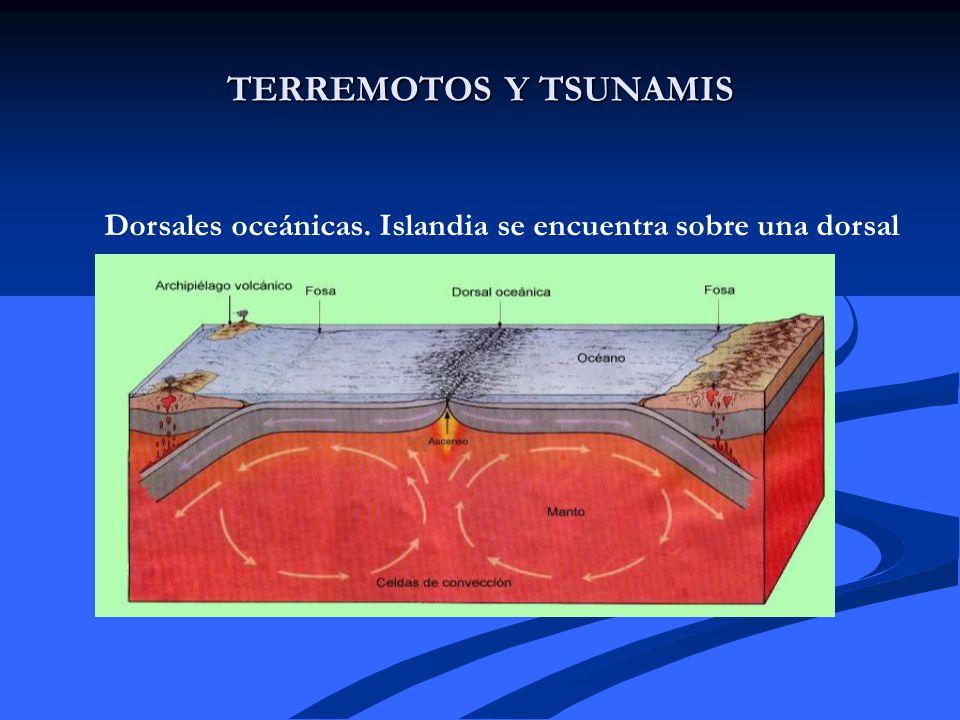 TERREMOTOS Y TSUNAMIS Dorsales oceánicas. Islandia se encuentra sobre una dorsal