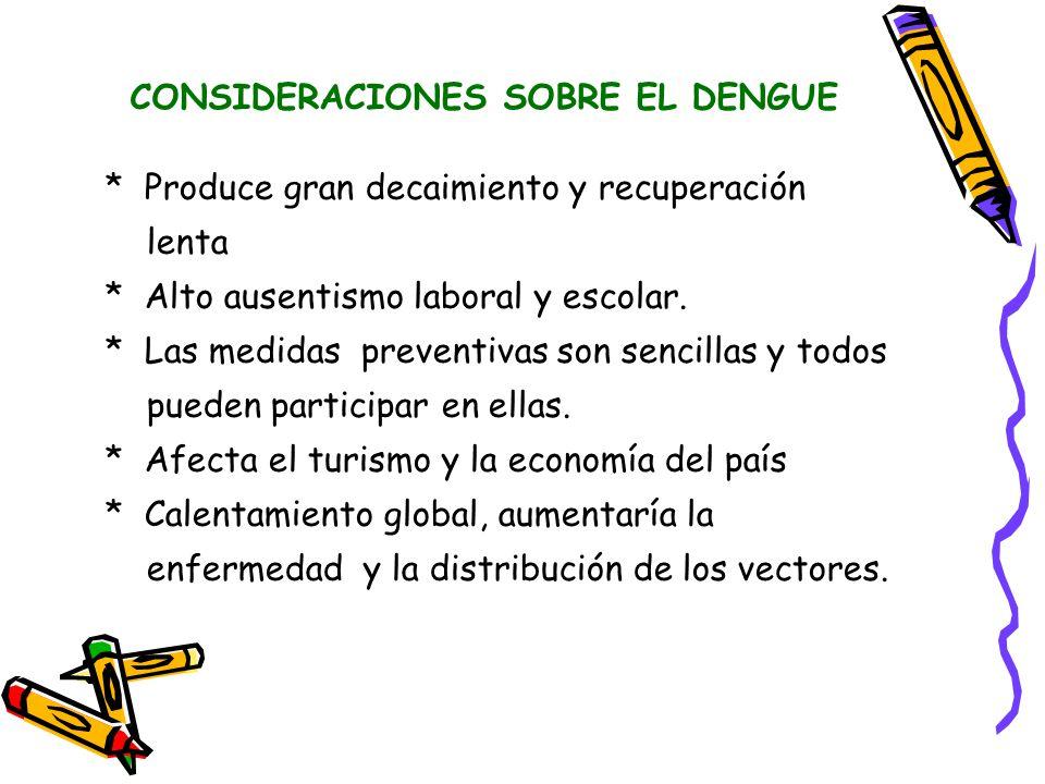 CONSIDERACIONES SOBRE EL DENGUE