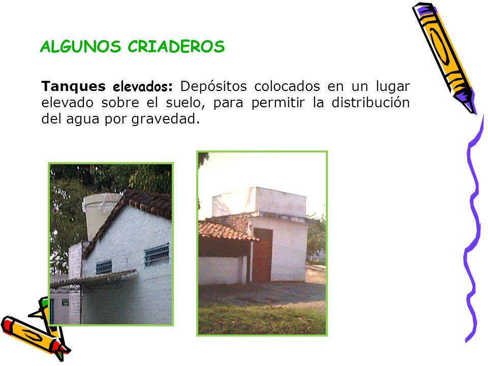 ALGUNOS CRIADEROS Tanques elevados: Depósitos colocados en un lugar elevado sobre el suelo, para permitir la distribución del agua por gravedad.