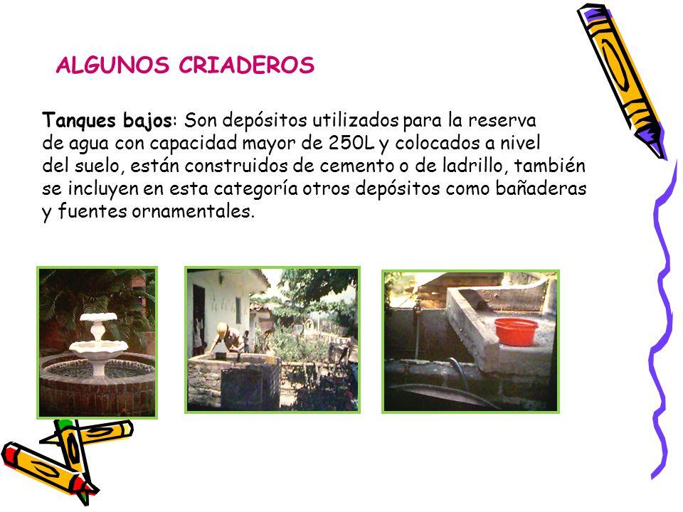 ALGUNOS CRIADEROS