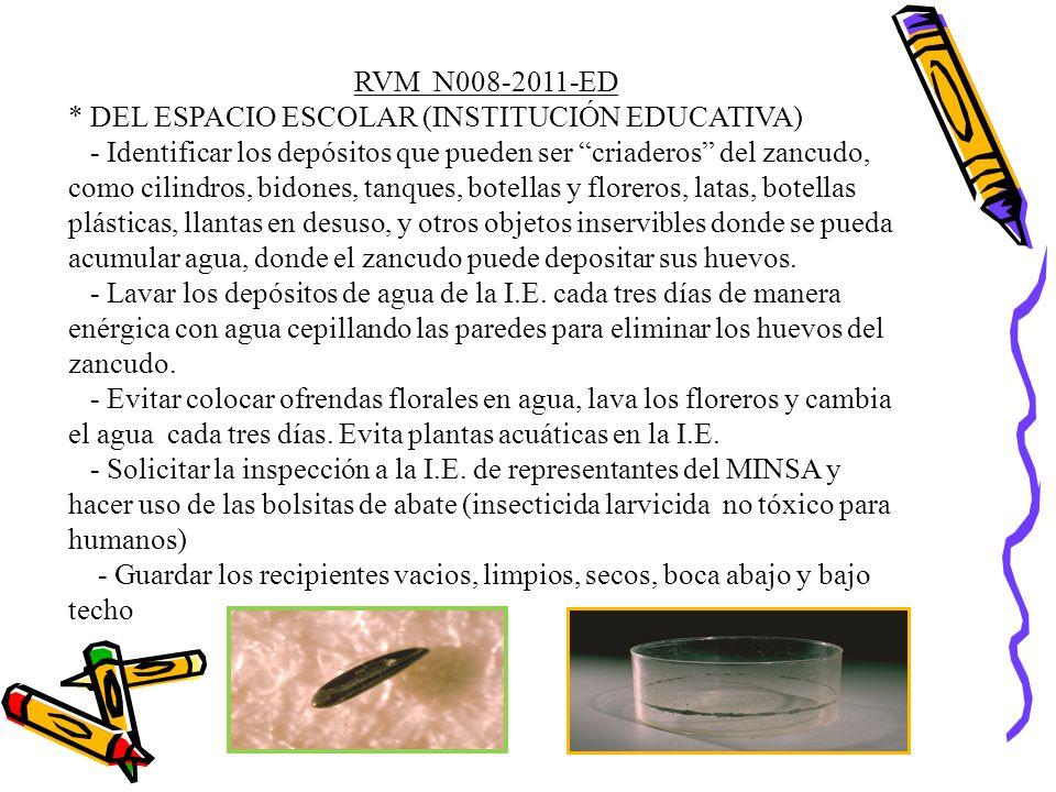 RVM N008-2011-ED * DEL ESPACIO ESCOLAR (INSTITUCIÓN EDUCATIVA)