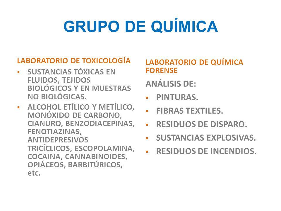 GRUPO DE QUÍMICA ANÁLISIS DE: PINTURAS. FIBRAS TEXTILES.