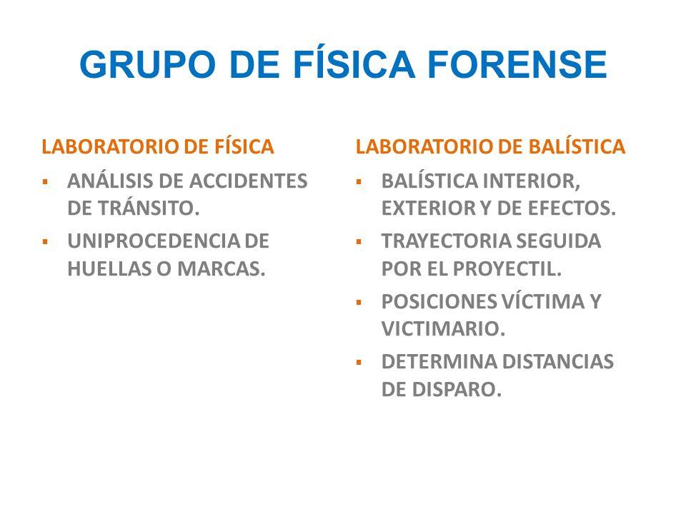 GRUPO DE FÍSICA FORENSE
