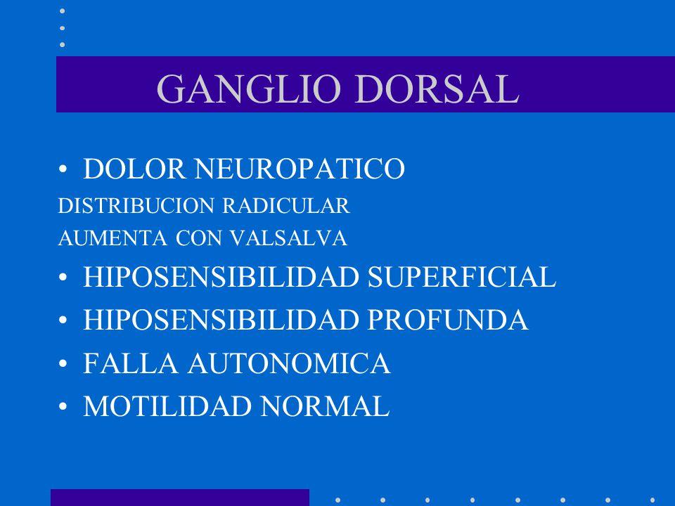 GANGLIO DORSAL DOLOR NEUROPATICO HIPOSENSIBILIDAD SUPERFICIAL