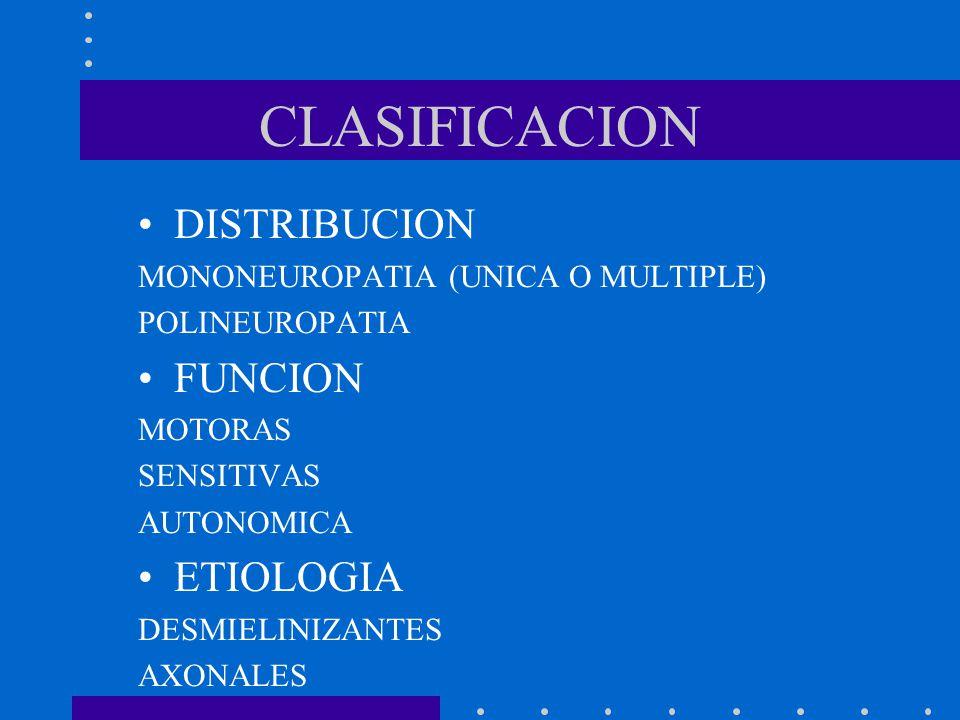CLASIFICACION DISTRIBUCION FUNCION ETIOLOGIA