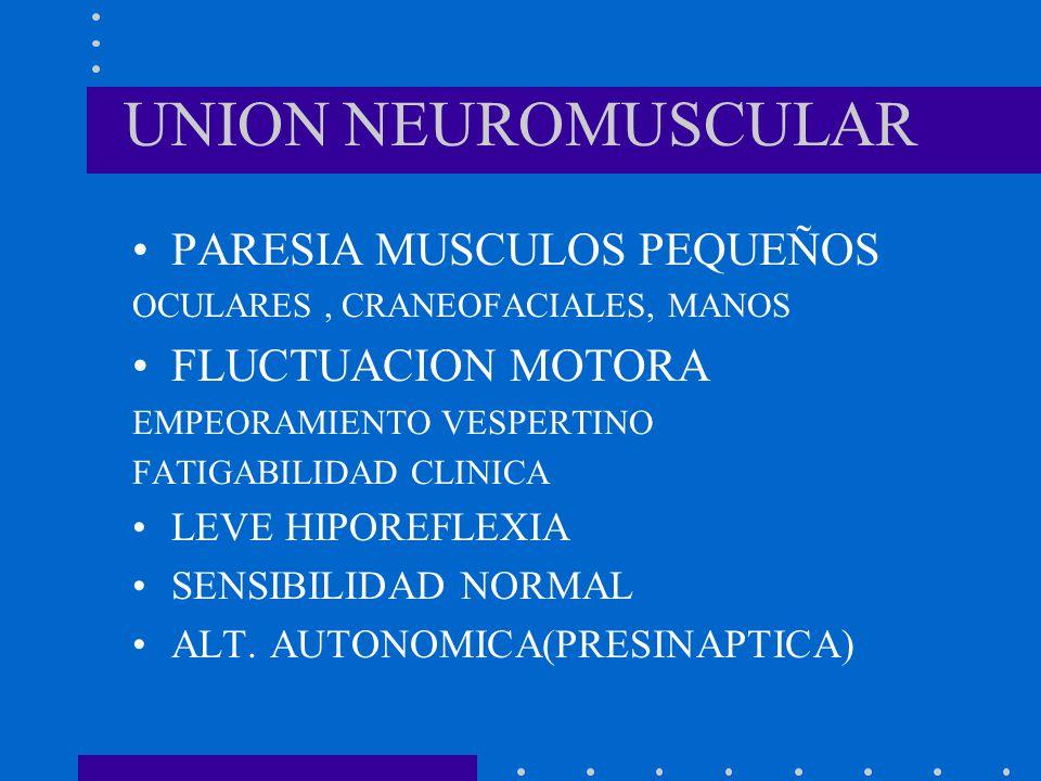 UNION NEUROMUSCULAR PARESIA MUSCULOS PEQUEÑOS FLUCTUACION MOTORA