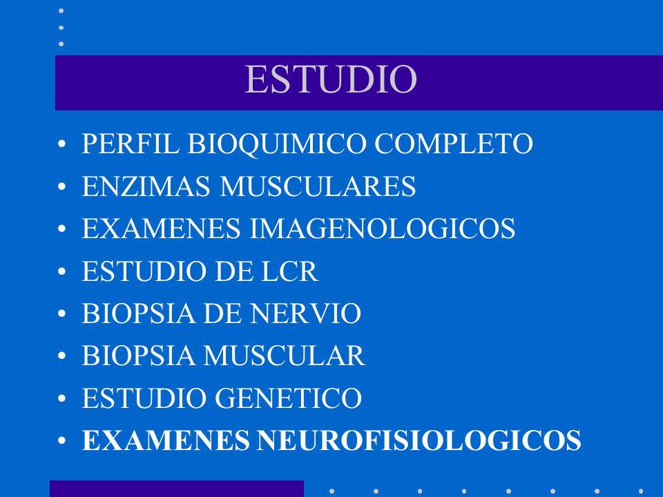 ESTUDIO PERFIL BIOQUIMICO COMPLETO ENZIMAS MUSCULARES