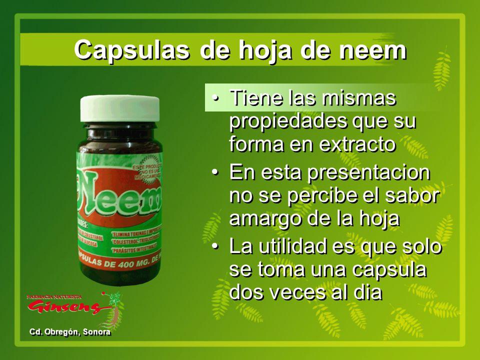 Capsulas de hoja de neem
