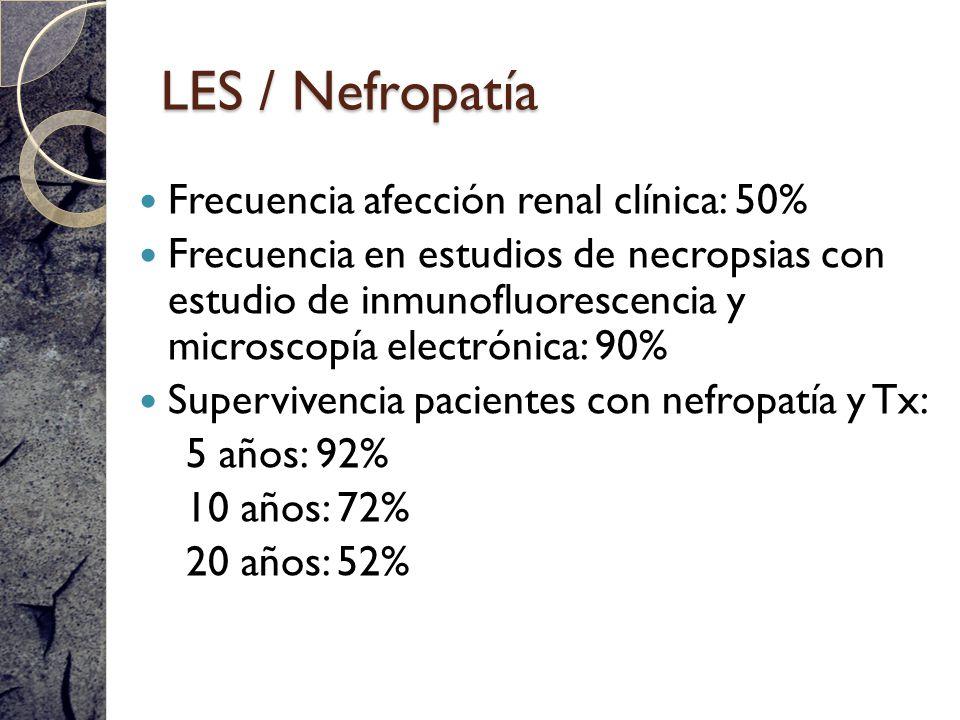 LES / Nefropatía Frecuencia afección renal clínica: 50%