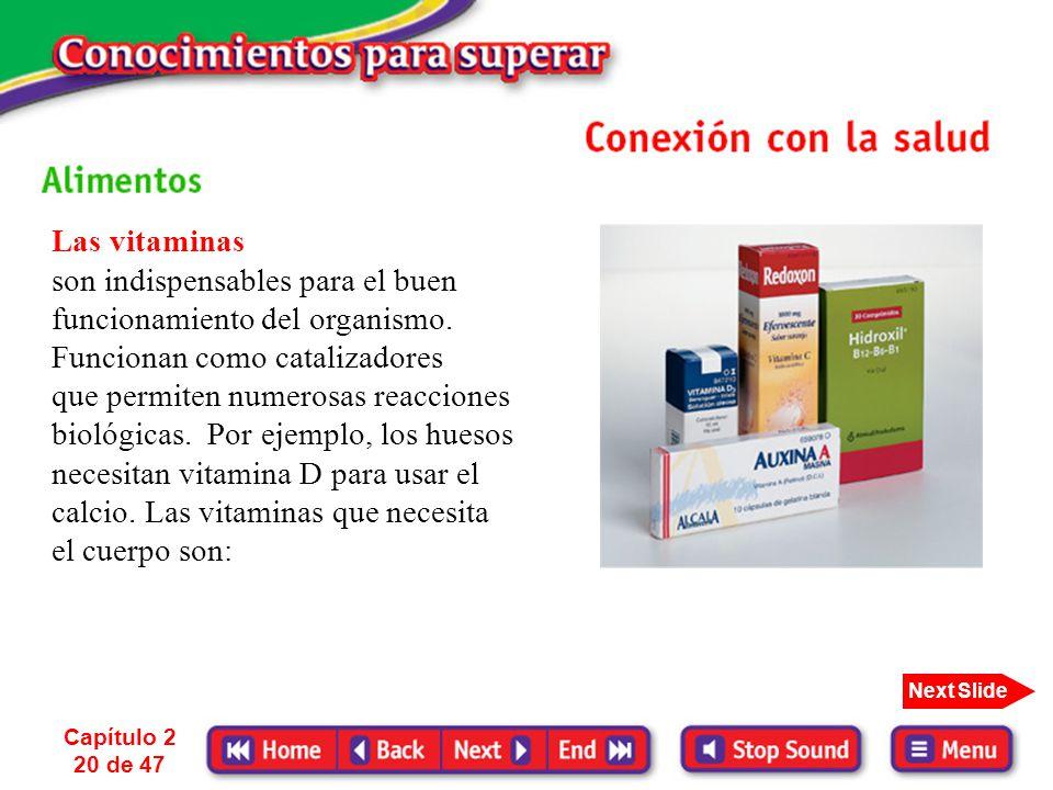 Las vitaminas son indispensables para el buen funcionamiento del organismo. Funcionan como catalizadores.