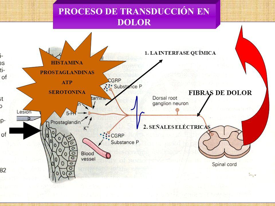 PROCESO DE TRANSDUCCIÓN EN DOLOR