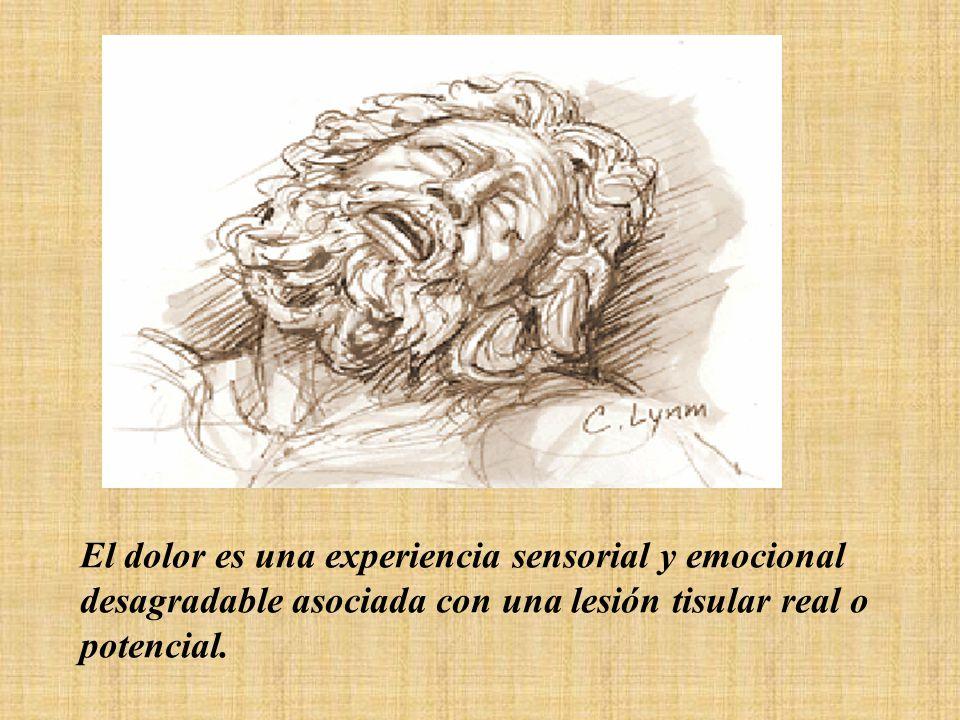 El dolor es una experiencia sensorial y emocional desagradable asociada con una lesión tisular real o potencial.