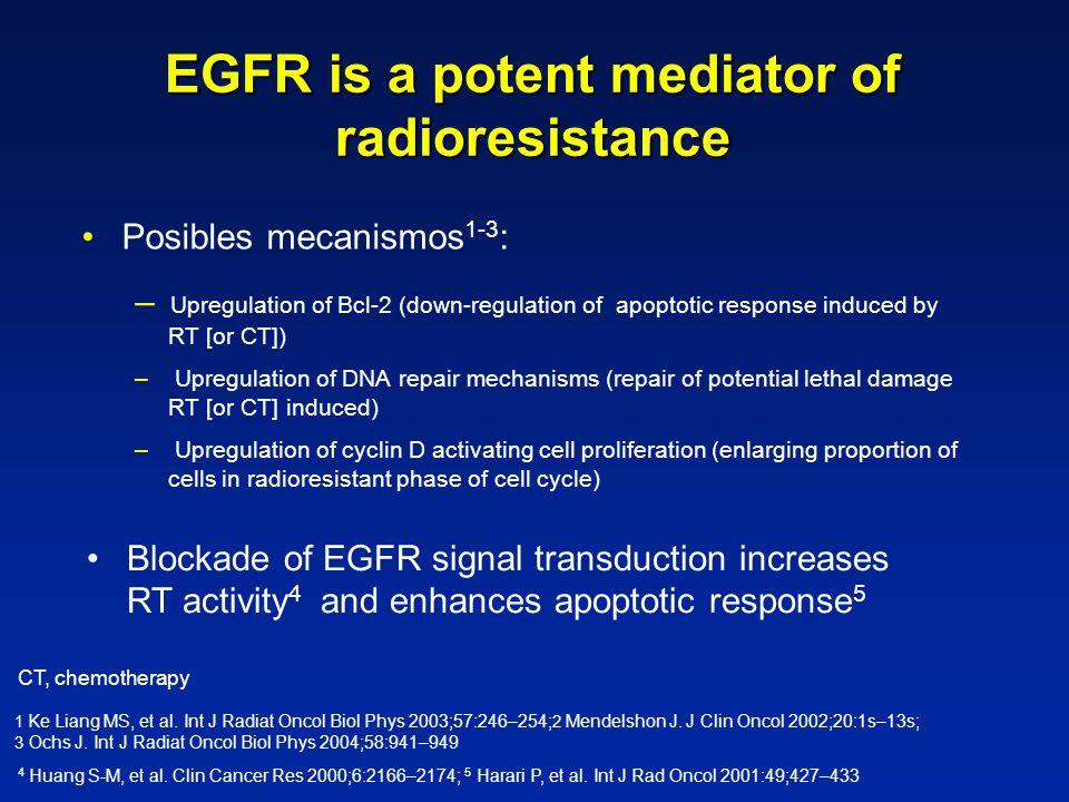 EGFR is a potent mediator of radioresistance