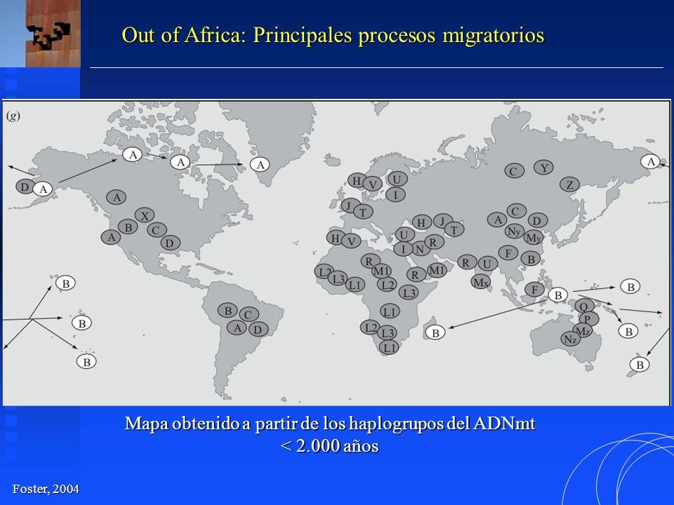 Mapa obtenido a partir de los haplogrupos del ADNmt