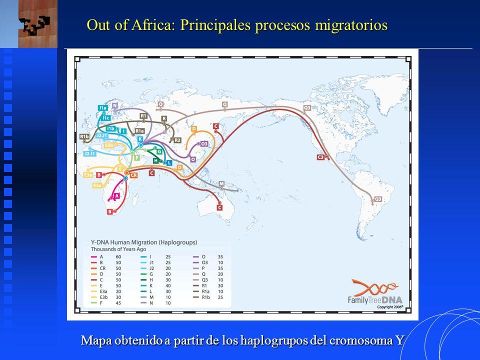 Mapa obtenido a partir de los haplogrupos del cromosoma Y