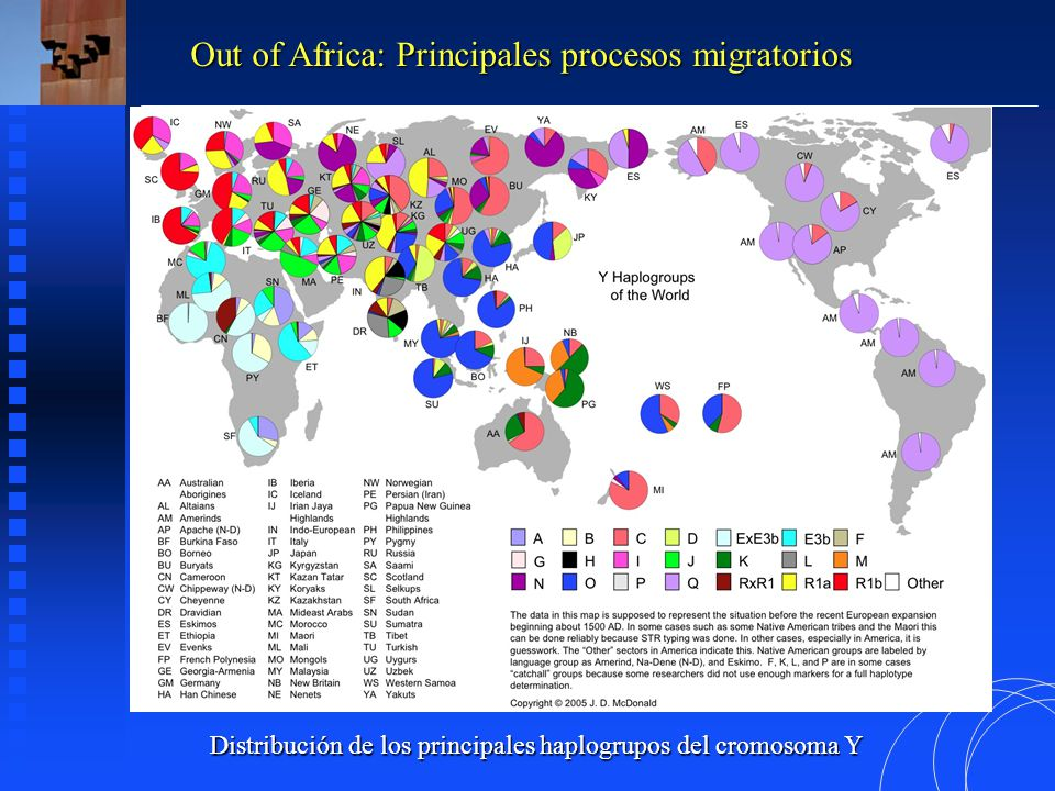 Distribución de los principales haplogrupos del cromosoma Y