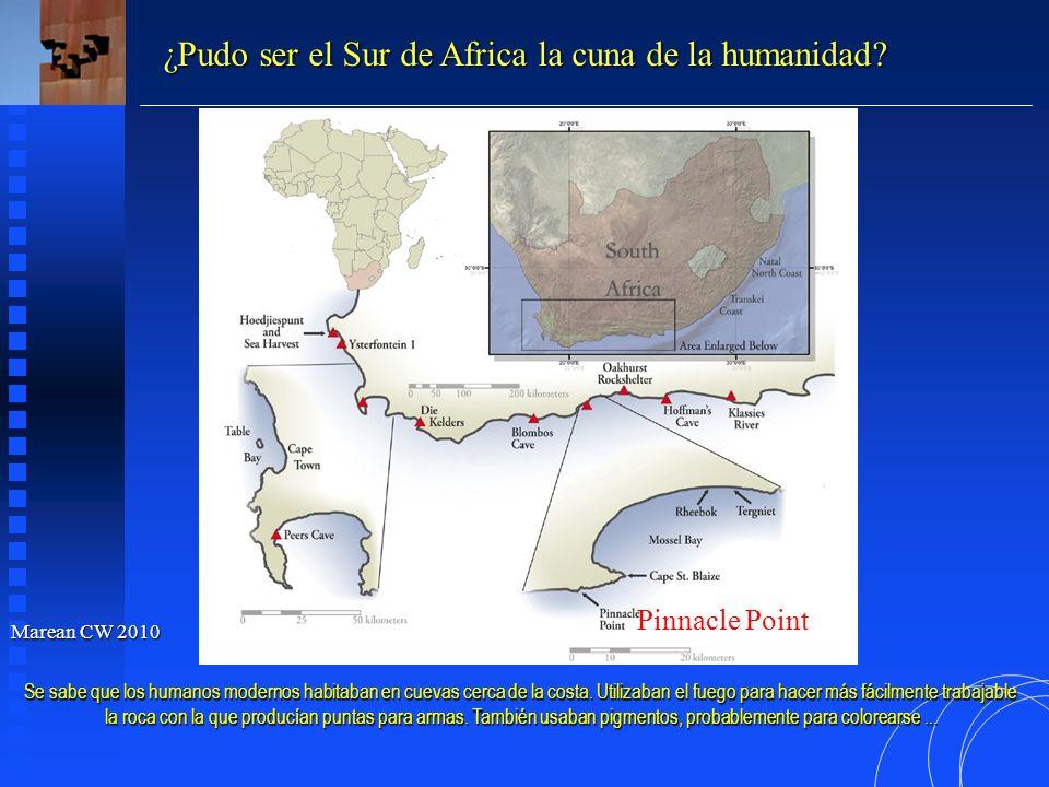 ¿Pudo ser el Sur de Africa la cuna de la humanidad