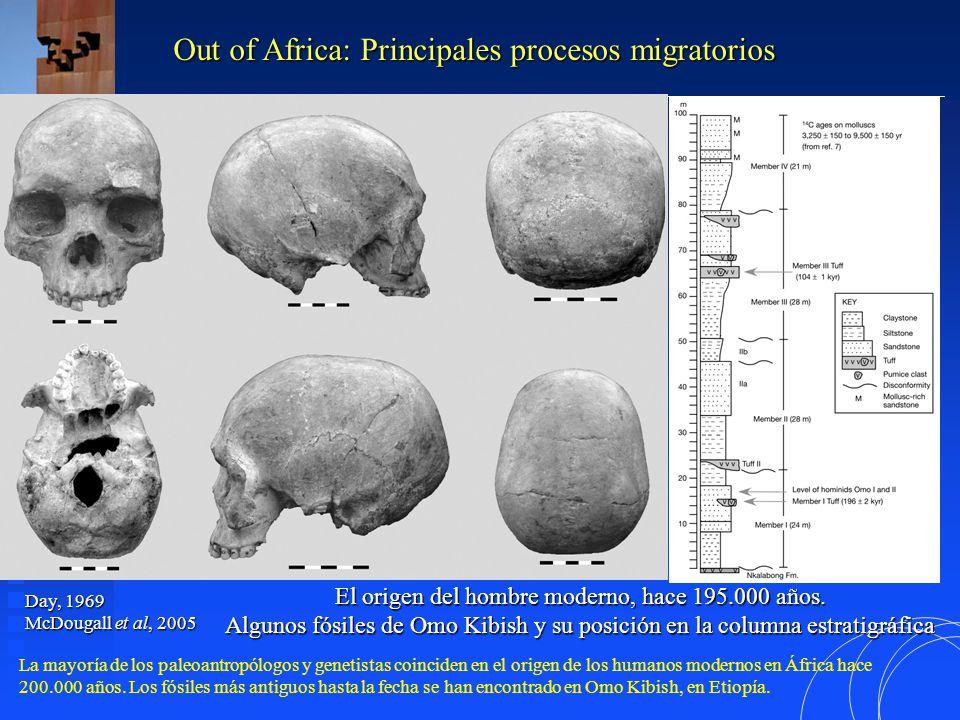 El origen del hombre moderno, hace 195.000 años.