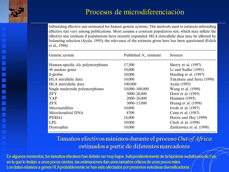 Procesos de microdiferenciación