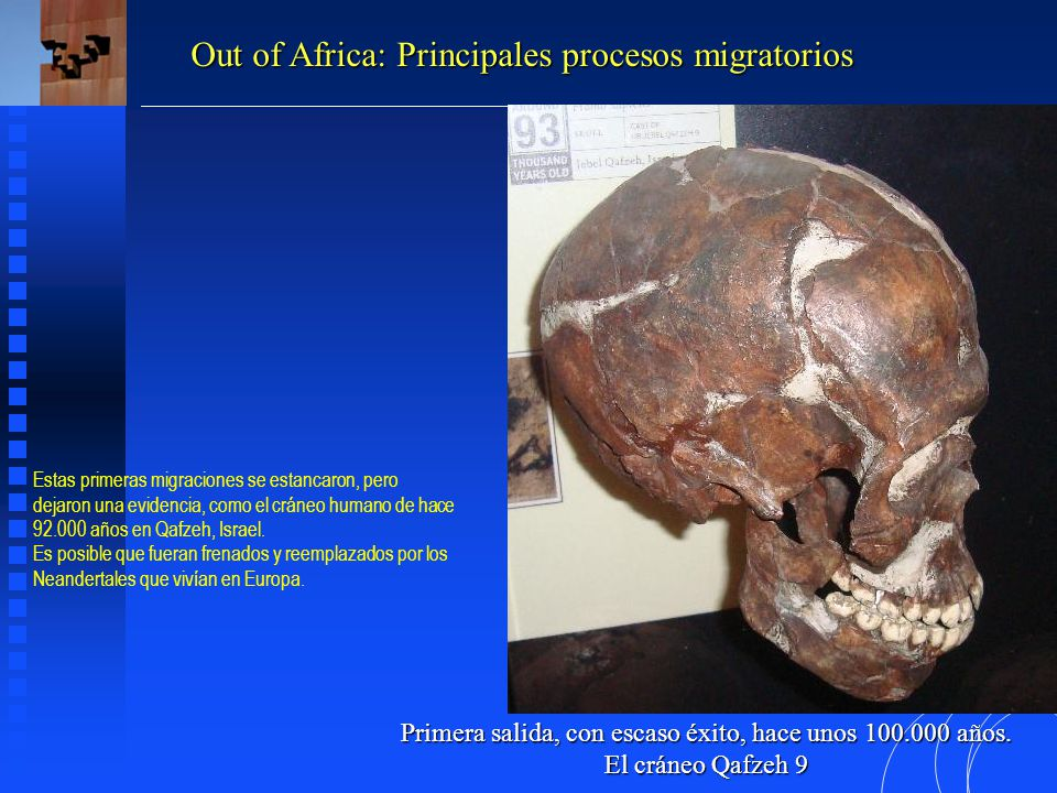 Primera salida, con escaso éxito, hace unos 100.000 años.