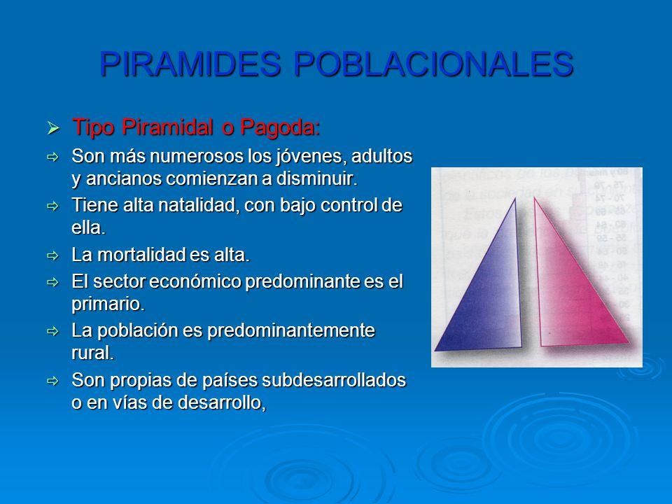 PIRAMIDES POBLACIONALES