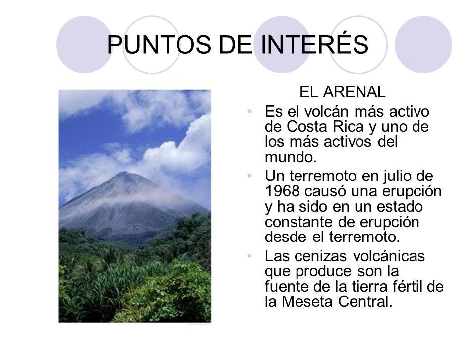 PUNTOS DE INTERÉS EL ARENAL