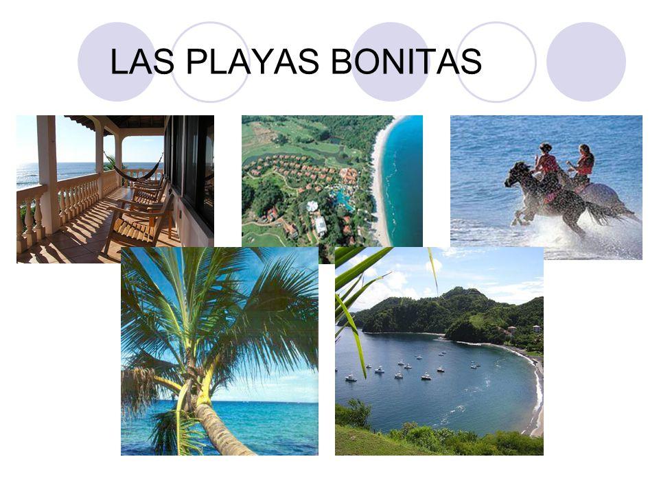 LAS PLAYAS BONITAS
