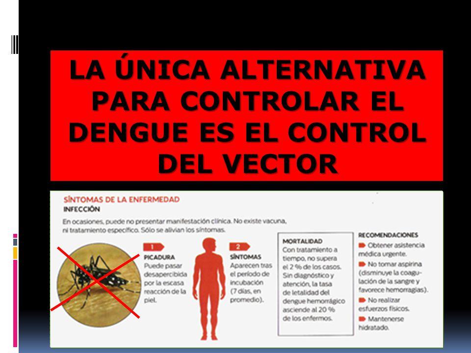 LA ÚNICA ALTERNATIVA PARA CONTROLAR EL DENGUE ES EL CONTROL DEL VECTOR