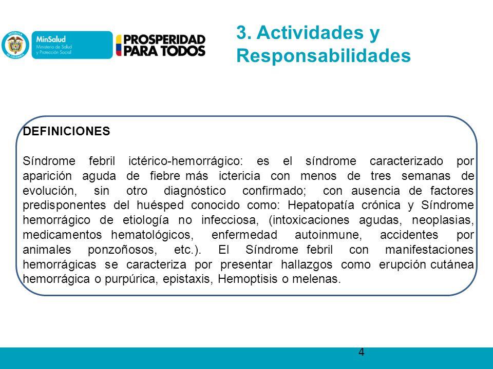 3. Actividades y Responsabilidades