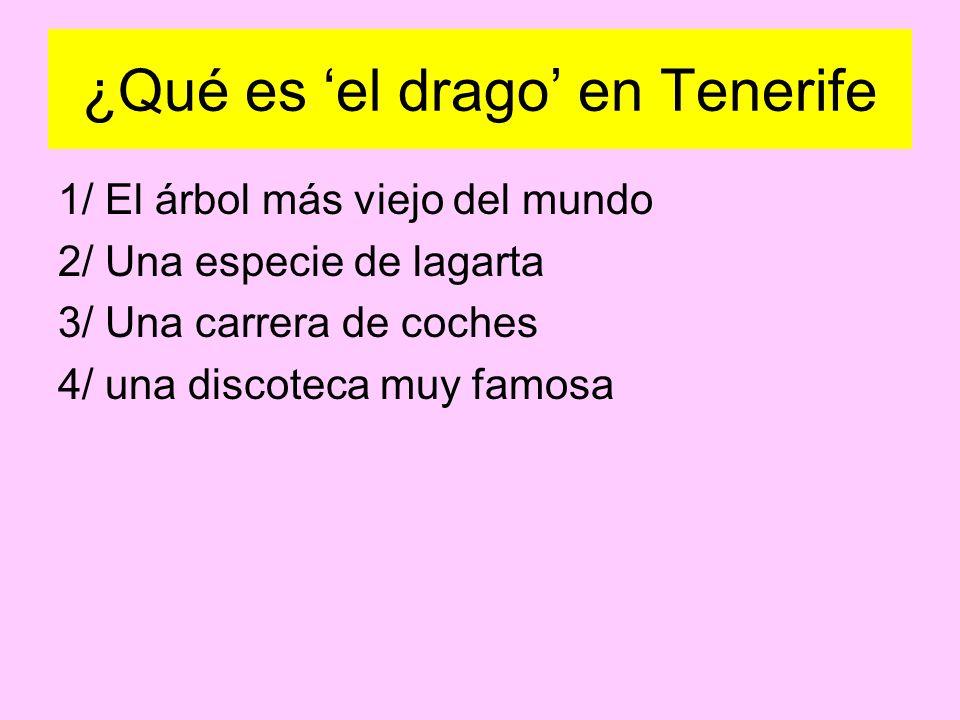¿Qué es 'el drago' en Tenerife