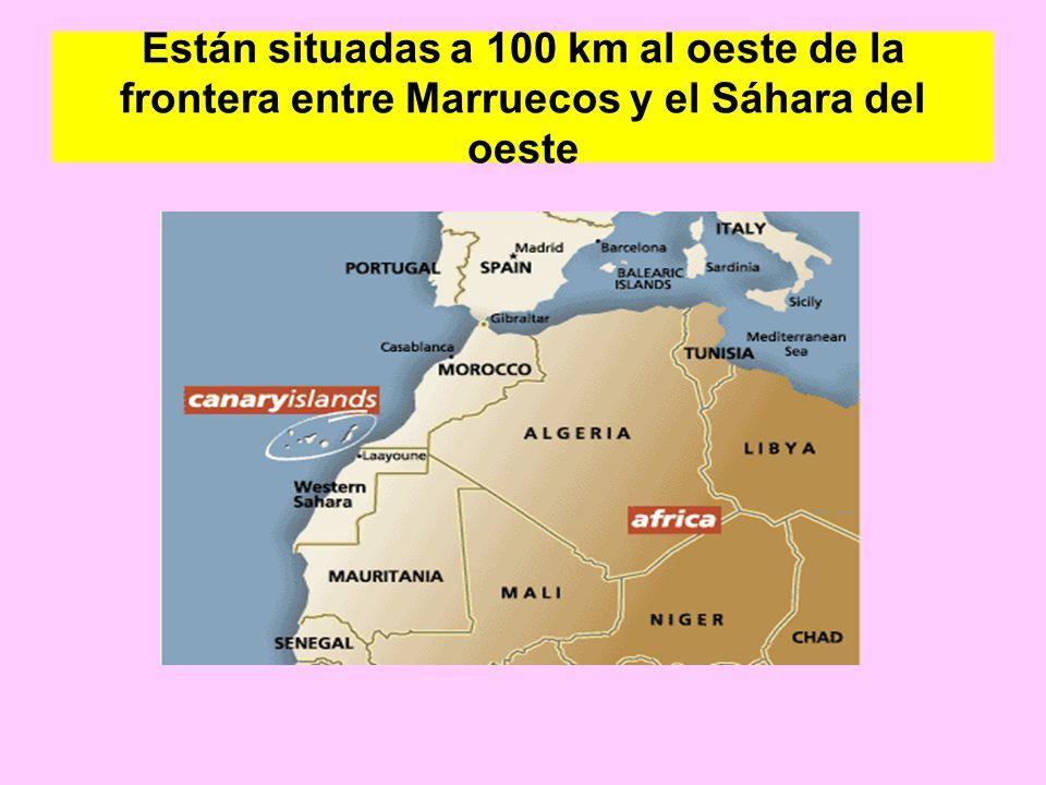 Están situadas a 100 km al oeste de la frontera entre Marruecos y el Sáhara del oeste