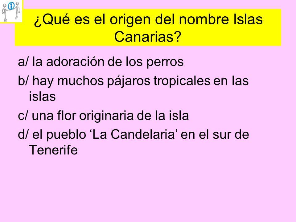 ¿Qué es el origen del nombre Islas Canarias