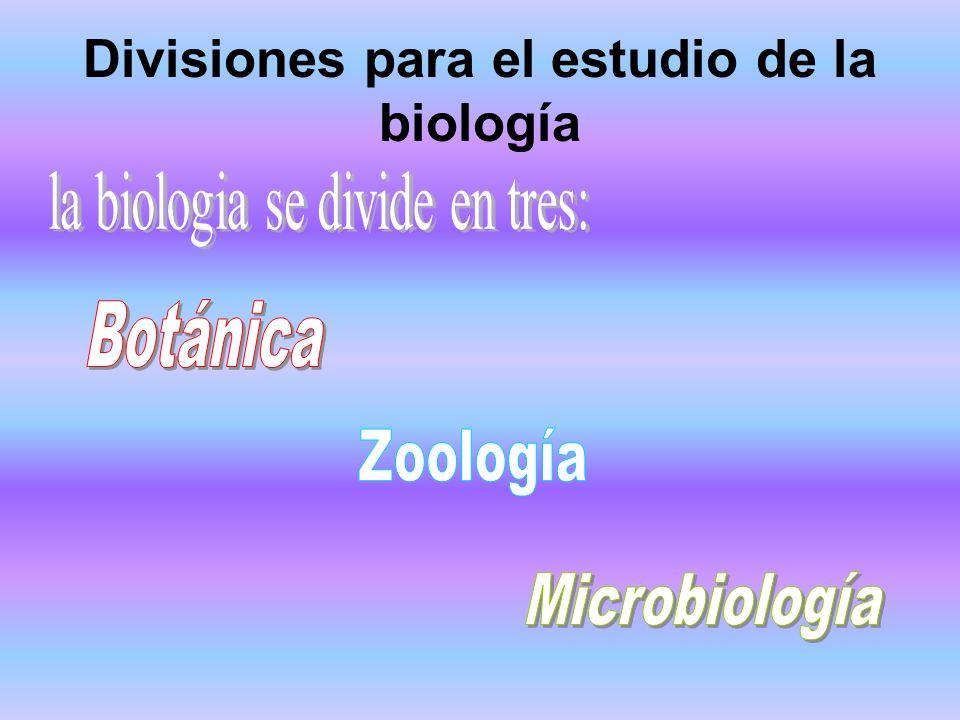 Divisiones para el estudio de la biología