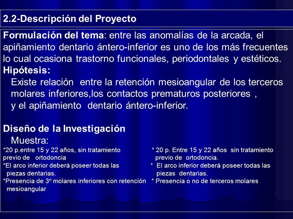 2.2-Descripción del Proyecto