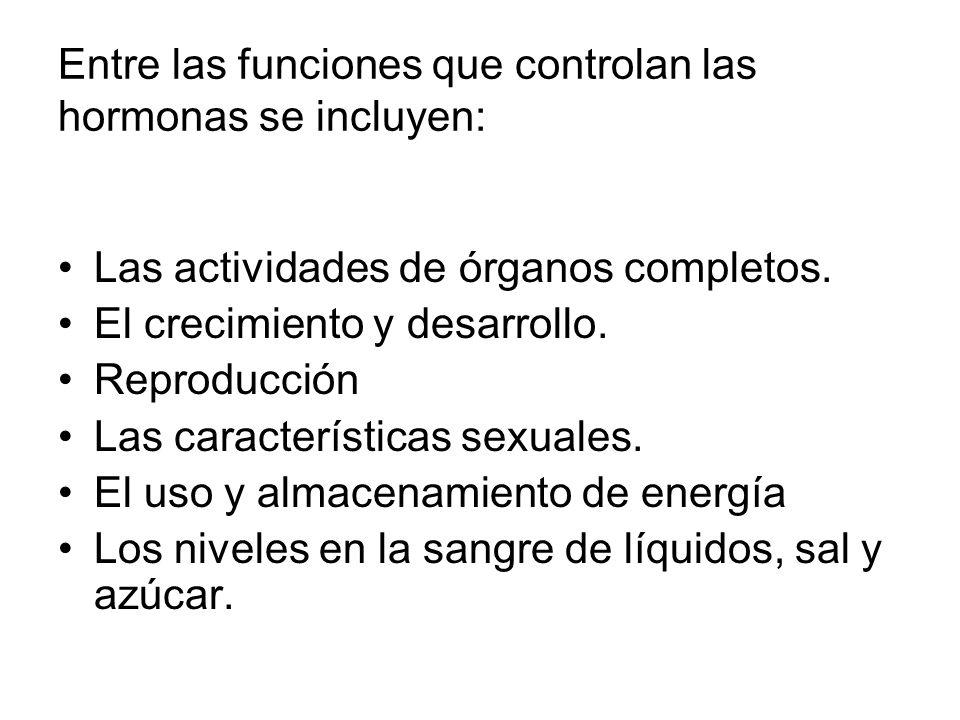 Entre las funciones que controlan las hormonas se incluyen: