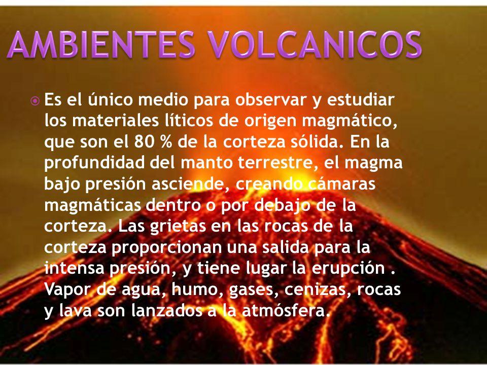 AMBIENTES VOLCANICOS