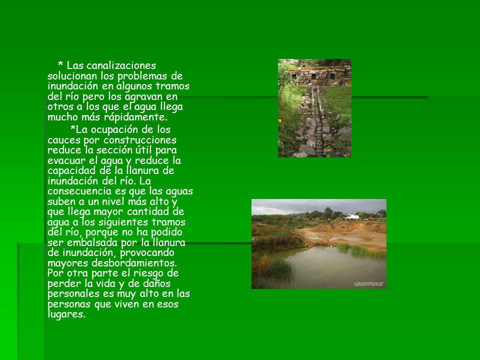 * Las canalizaciones solucionan los problemas de inundación en algunos tramos del río pero los agravan en otros a los que el agua llega mucho más rápidamente.
