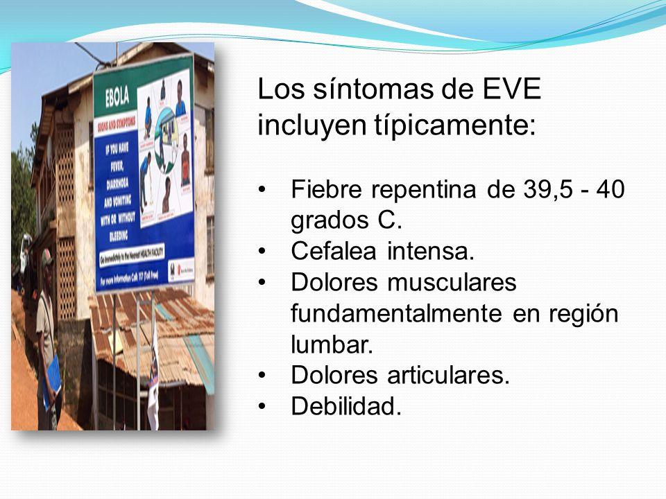 Los síntomas de EVE incluyen típicamente: