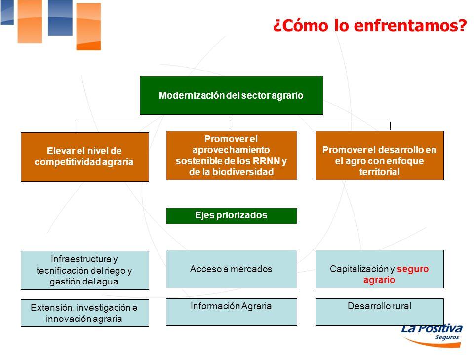 ¿Cómo lo enfrentamos Modernización del sector agrario