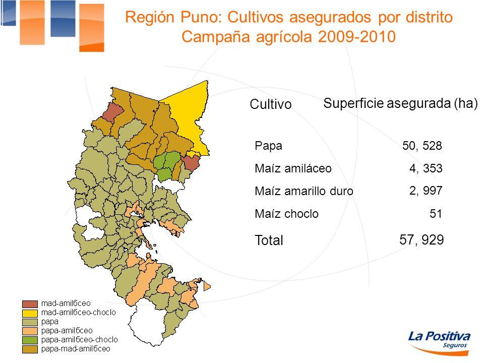 Región Puno: Cultivos asegurados por distrito Campaña agrícola 2009-2010
