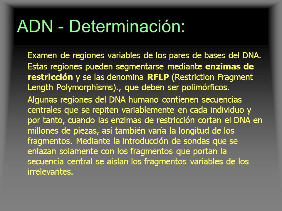 ADN - Determinación: