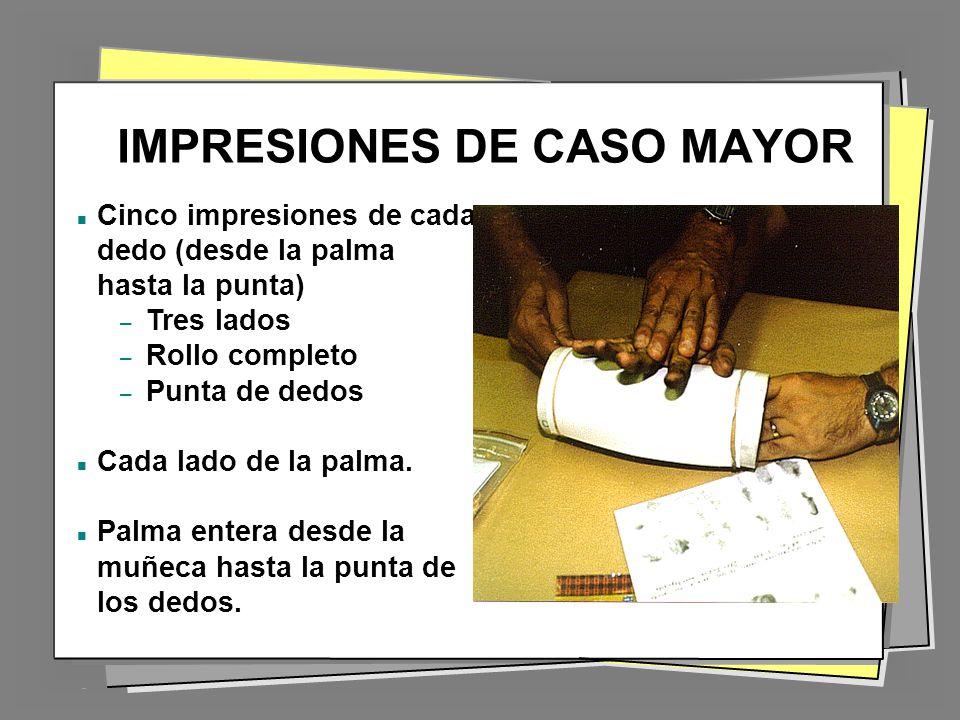IMPRESIONES DE CASO MAYOR