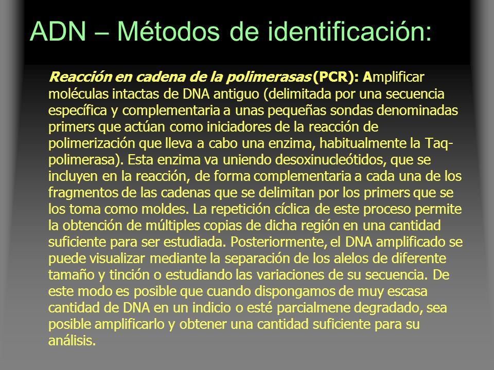 ADN – Métodos de identificación: