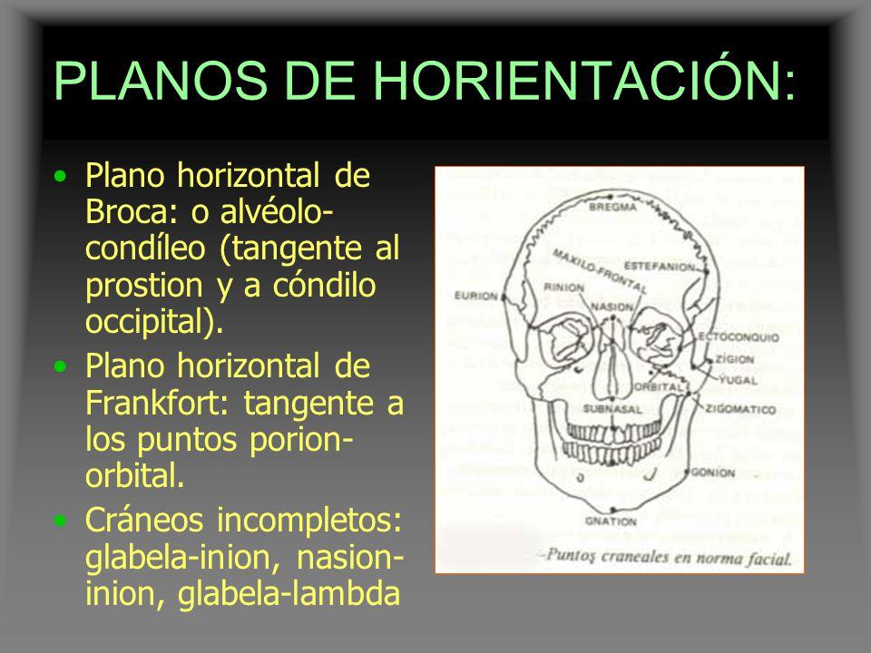 PLANOS DE HORIENTACIÓN: