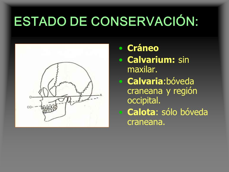 ESTADO DE CONSERVACIÓN: