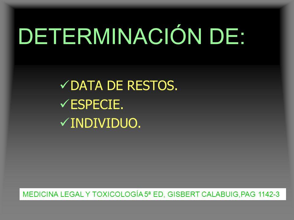 DETERMINACIÓN DE: DATA DE RESTOS. ESPECIE. INDIVIDUO.